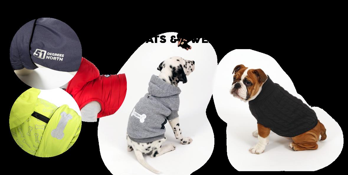 Dress dogcarts & sweaters