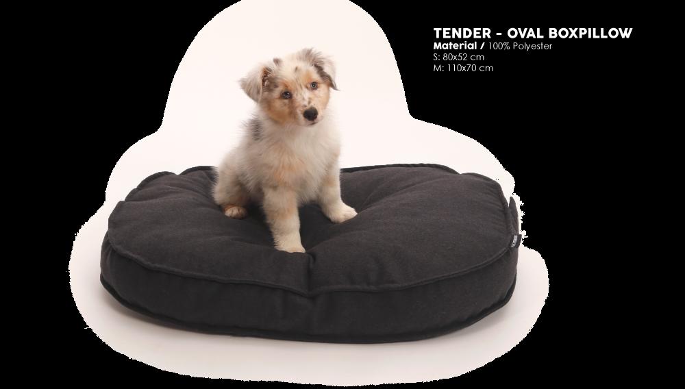 51DN-Tender-Oval-boxpillow
