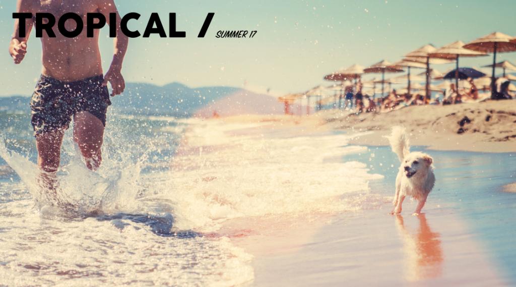 Dress Summer17 Tropical T-shirt Banner