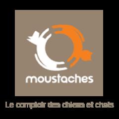 Logo Webshop Moustaches SQ