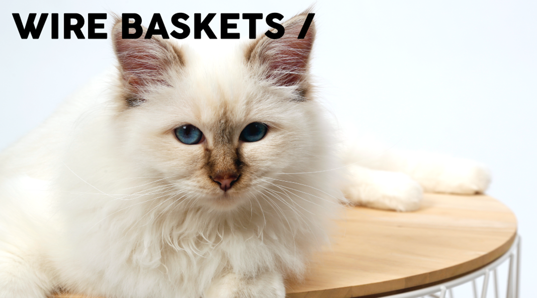 Wire Baskets - All Year - 51 Degrees North