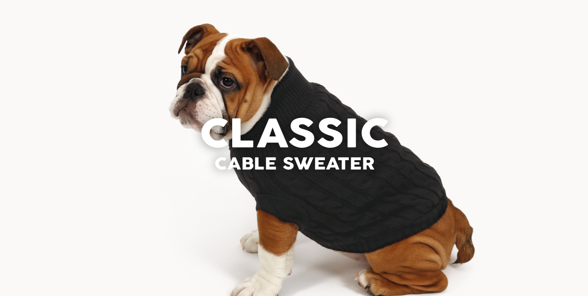 51 Degrees North Homepage Content Dress All year Classic cable sweater