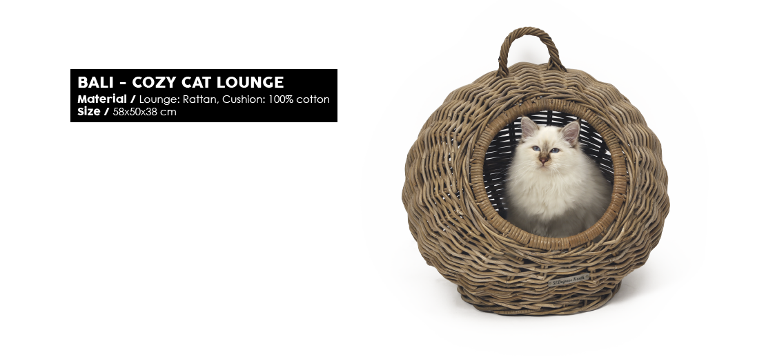 51 Degrees North Woven Bali Cat Lounge2