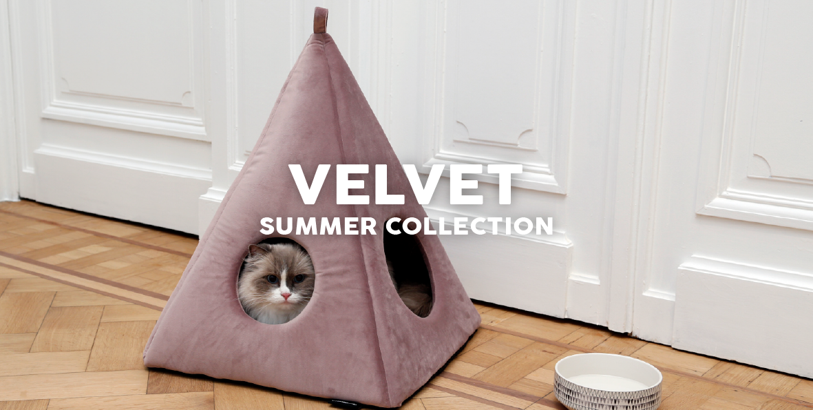 51 Degrees North Homepage Velvet Summer Collection
