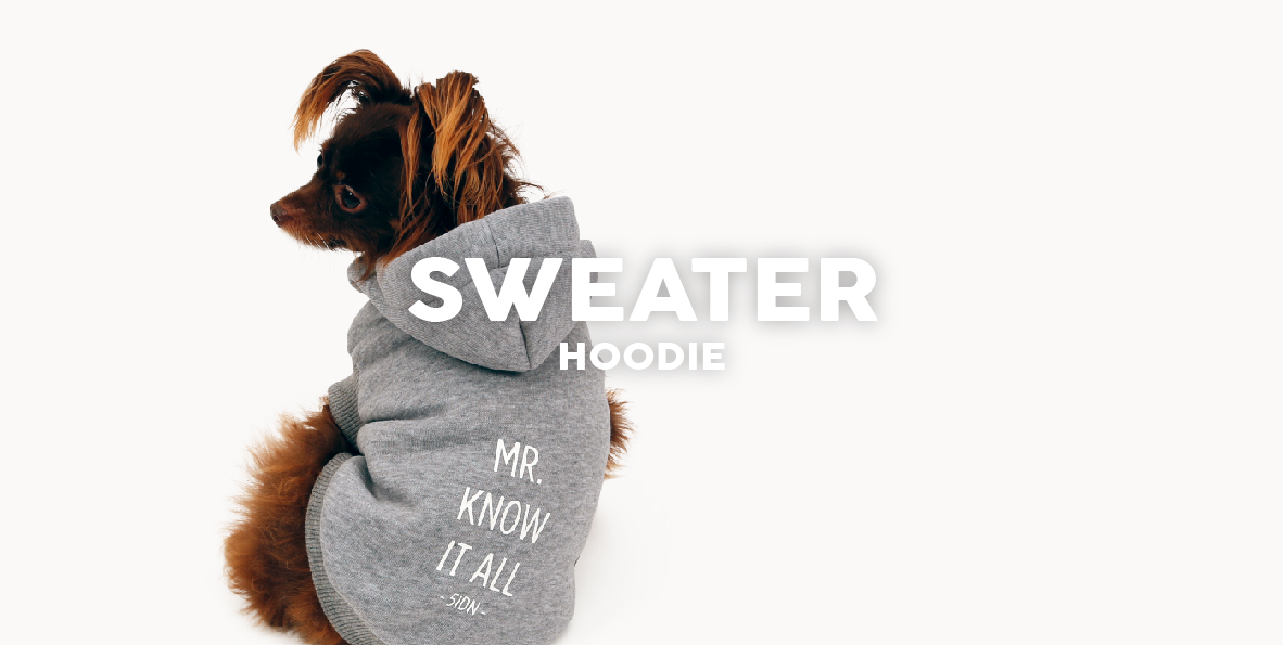 51 Degrees North Homepage Content Dress All year Sweater 2019
