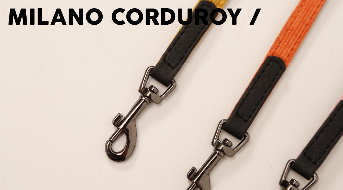 51DN - Walk - Milano Corduroy - Banner