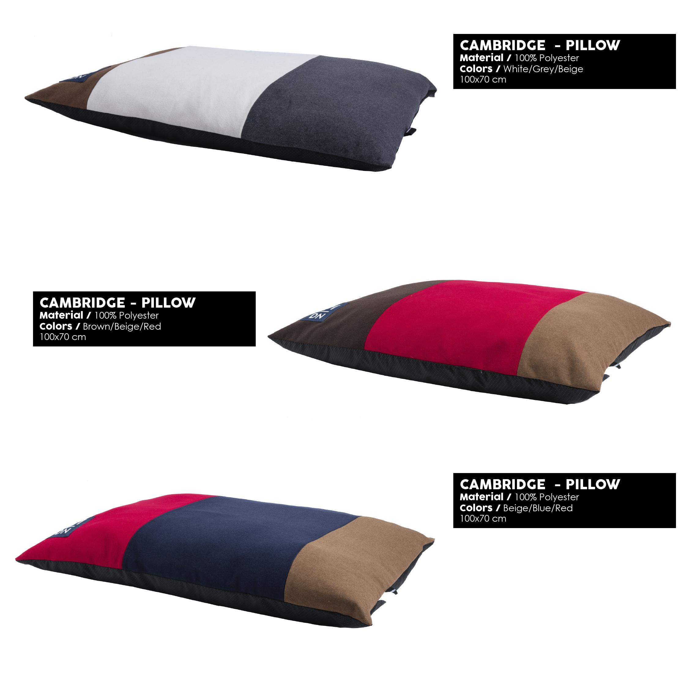51 Degrees North - CAMBRIDGE - Pillow